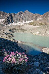 Glacier et lac d'Arsine