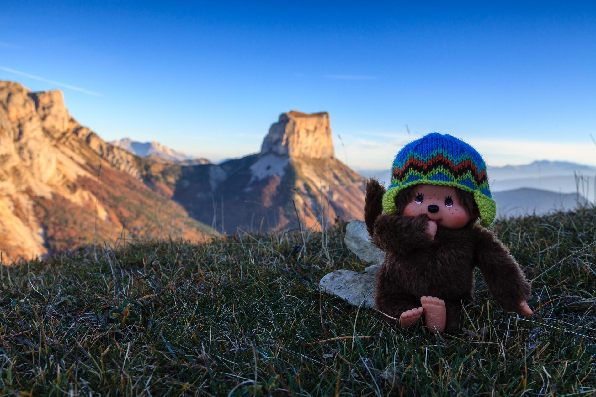 Kiki devant le Mont Aiguille